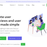 Ping Pong Website Testing Review