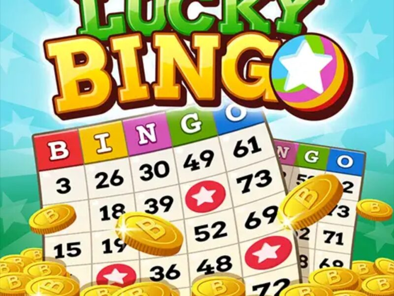 Lucky Bingo App Review: Is It Real? - Achieve More Than Average